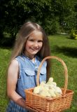 Girl holding yellow chicks stock photos