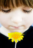 Girl holding a yellow flower to her face. Adorable little girl holding a yellow flower to her face stock image
