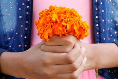 Yellow marigold flowers bouquet hold by girl on her hands royalty free stock image