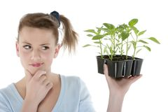 Girl holding young plants Royalty Free Stock Image