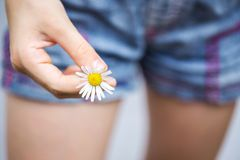 Girl holds a daisy in her hand. Summer. girl holds a daisy in her hand royalty free stock photography