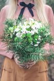 Girl holds her hands coniferous bouquet in the forest royalty free stock photo