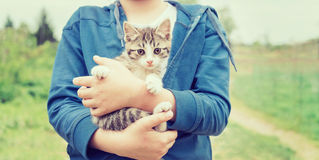 Girl holds kitten Royalty Free Stock Photos