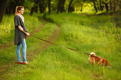Girl holds leashed dog Shiba Inu. Royalty Free Stock Photography