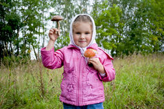 The girl holds mushrooms in hands Stock Images
