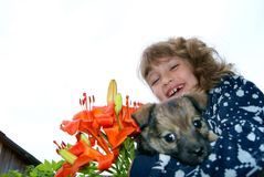 The girl holds a puppy Royalty Free Stock Photo