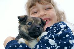 The girl holds a puppy Stock Photography