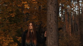 A girl in a hoody with her hair loose coming out of the depths of the wood stops by a tree against the autumnal leaves. And sunset. A girl looking into the stock video footage