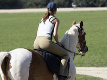 Girl on horse. Young woman riding brown white horse royalty free stock images