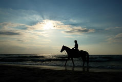 Girl on horse stock photography