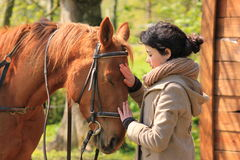 Girl and horse. Young girl stroking her chestnut horse Royalty Free Stock Photography