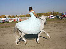 Girl on a horse. A girl showing off her skill at dressage Royalty Free Stock Photography
