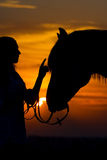 Girl and horse Royalty Free Stock Images