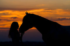 Girl and horse Royalty Free Stock Photography
