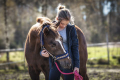Girl with horse. Girl bringing a horse to the paddock Stock Photo