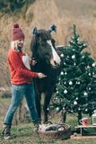 Girl with horse decorating Christmas tree. stock photos
