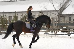 A girl on a horse  jumps  gallops. A girl trains riding a horse in a small paddock. A cloudy winter day.  Stock Photography