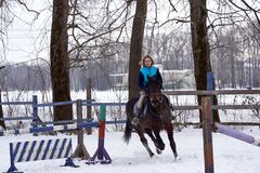 A girl on a horse  jumps  gallops. A girl trains riding a horse in a small paddock. A cloudy winter day.  Stock Photo