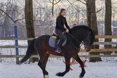A girl on a horse  jumps  gallops. A girl trains riding a horse in a small paddock. A cloudy winter day.  Stock Image