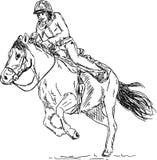 Girl - horse rider Stock Image