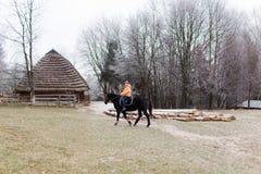 Girl and horse Stock Photos