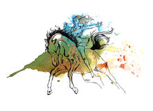 Girl on a horse. Girl riding on a horseback, black and gold drawing on a yellow orange olive-green and blue watercolor splash background. Original art Royalty Free Stock Image