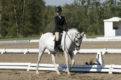 Girl horse riding. Young caucasian preteen girl riding her white horse in trot in the arena at the bromont concours June 12, 2016 stock photography
