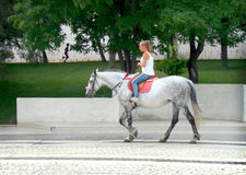 Girl on a horse. Russia . Astrakhan 2015 summer Royalty Free Stock Photo