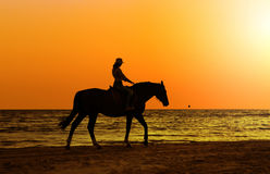 Girl with horse on seacoast Royalty Free Stock Image