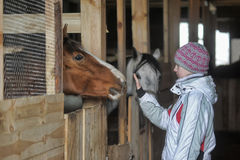 Girl with a horse stabled Royalty Free Stock Images