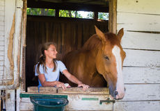 Girl with a horse Royalty Free Stock Images