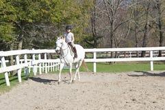Girl at horseback riding lesson. Royalty Free Stock Photo