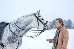 Girl on horseback in the winter on snow Royalty Free Stock Image