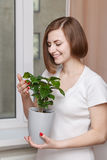 Girl with houseplant Stock Photos