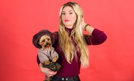 Girl hug little dog in coat. Woman carry yorkshire terrier. Make sure dog feel comfortable in clothes. Apparel and. Accessories. Dressing dog for cold weather stock photos