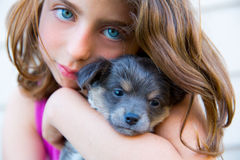 Girl hug a little puppy dog gray hairy chihuahua. Doggy Royalty Free Stock Image