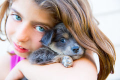 Girl hug a little puppy dog gray hairy chihuahua Stock Photo