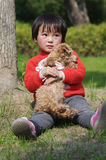 Girl hug puppy. Chinese girl hug poodle puppy Royalty Free Stock Images