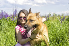 Girl hugging a dog  outdoors Royalty Free Stock Image