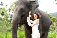 Girl hugging an elephant in the jungle stock images