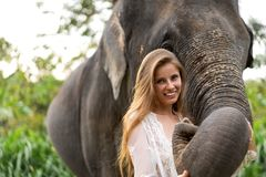 Girl hugging an elephant in the jungle royalty free stock image