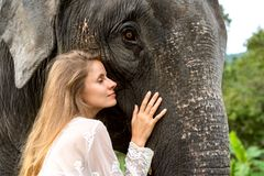 Girl hugging an elephant in the jungle stock photos