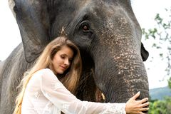 Girl hugging an elephant in the jungle stock image