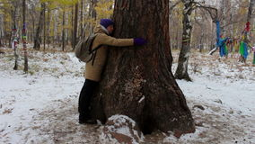 Girl hugging a large old tree in winter forest stock video footage