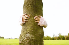 Girl hugging tree in park. Stock Photography