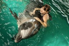 A girl hugs a dolphin in the pool. Swimming with dolphins, communication with animals stock photography