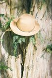 Hat on a tree Royalty Free Stock Photography