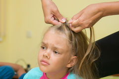 Girl hurt when her long hair braided Royalty Free Stock Images