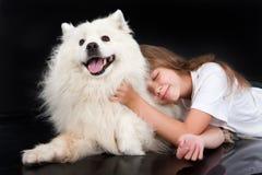 Girl And Husky Royalty Free Stock Image