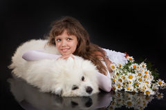 Girl And Husky Royalty Free Stock Photography